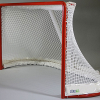 Eishockeytor-1